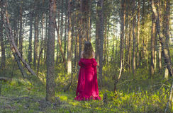 Young woman in red dress walking in the forest Royalty Free Stock Photography