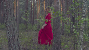 Young woman in red dress walking in the forest Stock Images