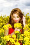 Young  woman in red dress in yellow field Royalty Free Stock Photo