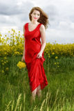Young  woman in red dress in yellow field Stock Images