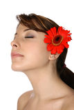 Young woman with red gerbera Stock Image