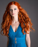 Young woman with red hair. Stock Photos