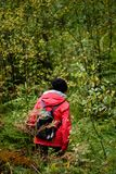 Young woman in red jacket enjoying nature in forest. Latvia Royalty Free Stock Images