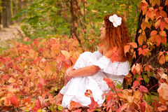 Young woman among red leaves Stock Photos