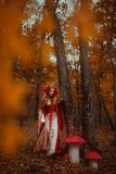 Woman in red medieval dress. A young woman in red medieval dress walking in wonderland stock images