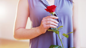 Young Woman With a Red Rose in Her Right Hand Stock Image