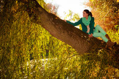 Young woman relaxing in autumnal park. Stock Photos