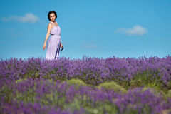 Young woman relaxing in lavender field Royalty Free Stock Photography