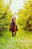 Young woman ridding on a horse. Animal, horsemanship concept. Young woman ridding on a horse through garden on sunny spring day royalty free stock image