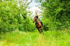 Young woman ridding on a horse Stock Photography