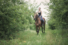 Young woman ridding on a horse Stock Images