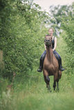 Young woman ridding on a horse Royalty Free Stock Photos