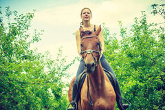 Young woman ridding on a horse Stock Image