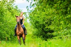 Young woman ridding on a horse Royalty Free Stock Photography