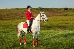 Young woman rider, wearing red redingote and white breeches, with her horse in evening sunset light. Outdoor photography in lifestyle mood stock images