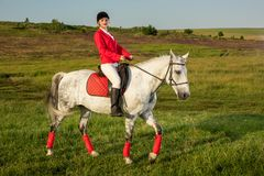 Young woman rider, wearing red redingote and white breeches, with her horse in evening sunset light. Outdoor photography in lifestyle mood royalty free stock photos