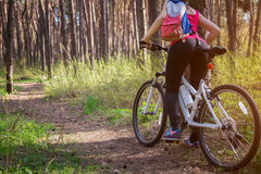 Young woman riding a bicycle in the forest Royalty Free Stock Photo