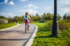 Young woman riding on bicycle in park Royalty Free Stock Photos