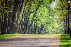 Young woman riding on bicycle in park Stock Photos