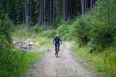 Young woman riding bike on forest trail road. Mountain bicycle trip background Royalty Free Stock Photos