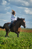 Young woman riding on a brown horse. In a field in summer Royalty Free Stock Photo