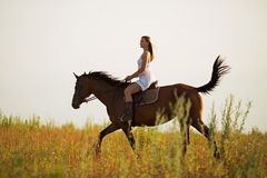Young woman riding a brown horse Royalty Free Stock Photography