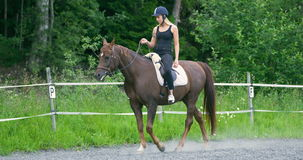 Young woman riding her arabian horse at farm. Beautiful young woman raiding her adult arabian horse at farm or ranch. Slow motion stock video