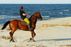 Young woman riding horse on the beach. Royalty Free Stock Photos