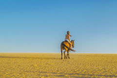 Young Woman Riding horse at the Beach Stock Photography