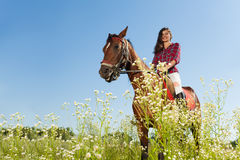 Young woman riding a horse in flowery meadow Stock Images