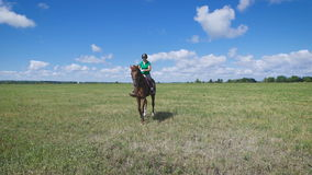 Young woman riding a horse on the green field stock video