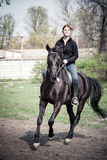 Young Woman Riding Horse Royalty Free Stock Photos