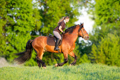 Young woman is riding a horse in summertime Stock Photo