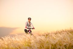 Young Woman Riding Mountain Bikes in the Beautiful Field of Feather Grass at Sunset. Adventure and Travel. royalty free stock photos
