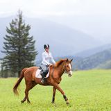 Young woman riding sorrel horse on mountain meadow Royalty Free Stock Image
