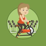 Young woman riding stationary bicycle. Stock Image