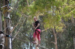 Young woman on a rope park adventure course. Young woman having fun on a rope park adventure course in a eucalyptus forest Stock Photography