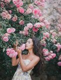 Young woman among roses in a garden. Beautiful young woman with long curly hair among roses in a garden Royalty Free Stock Image