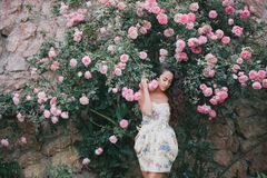 Young woman among roses in a garden. Beautiful young woman with long curly hair among roses in a garden Royalty Free Stock Photo