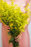 Young woman in a rosy dress holding a bunch of colorful picked w Stock Images
