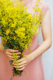 Young woman in a rosy dress holding a bunch of colorful picked w Stock Photos