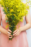 Young woman in a rosy dress holding a bunch of colorful picked w Royalty Free Stock Photos