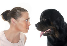 Young woman and rottweiler Stock Photography