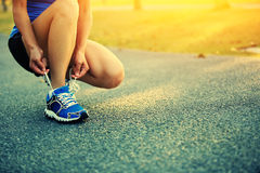 Young woman runner tying shoelaces Stock Image