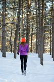 Young Woman Running in Beautiful Winter Forest at Sunny Frosty Day. Active Lifestyle Concept. royalty free stock photos