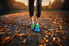 Young woman running in the early evening autumn leaves Stock Images
