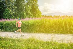 Woman trail running on country road in mountains, summer day Royalty Free Stock Photos