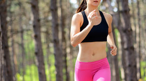 Young Woman Running on the Trail in the Beautiful Wild Pine Forest. Active Lifestyle Concept. Space for Text. Stock Images