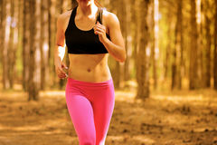 Young Woman Running on the Trail in the Beautiful Wild Pine Forest. Active Lifestyle Concept. Space for Text. Stock Image
