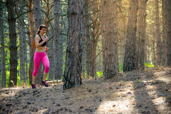 Young Woman Running on the Trail in the Beautiful Wild Pine Forest. Active Lifestyle Concept. Space for Text. Royalty Free Stock Photography